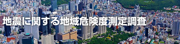 東京 都 地域 危険 度